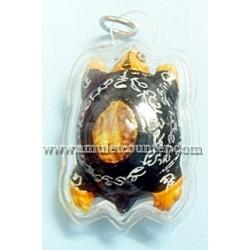Wealth Tortoise Bia Gae (Black) BE 2554